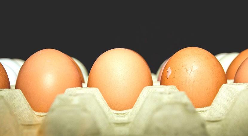 Eco-SHELL: busca segunda vida cáscara huevo
