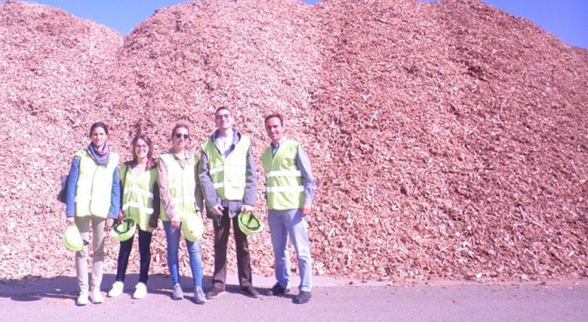 España valorizó 76% residuos envase, embalaje y palet madera 2015