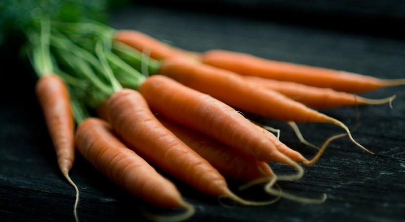 Crear biocombustibles y suplementos alimenticios partir desechos zanahoria ya es posible
